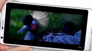 conoce los mejores celulares de gama media