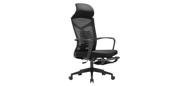 SIHOO Ergonomic Chair
