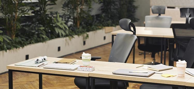 Mejores sillas de oficina ergonómicas, cómodas y para cuidar tu espalda